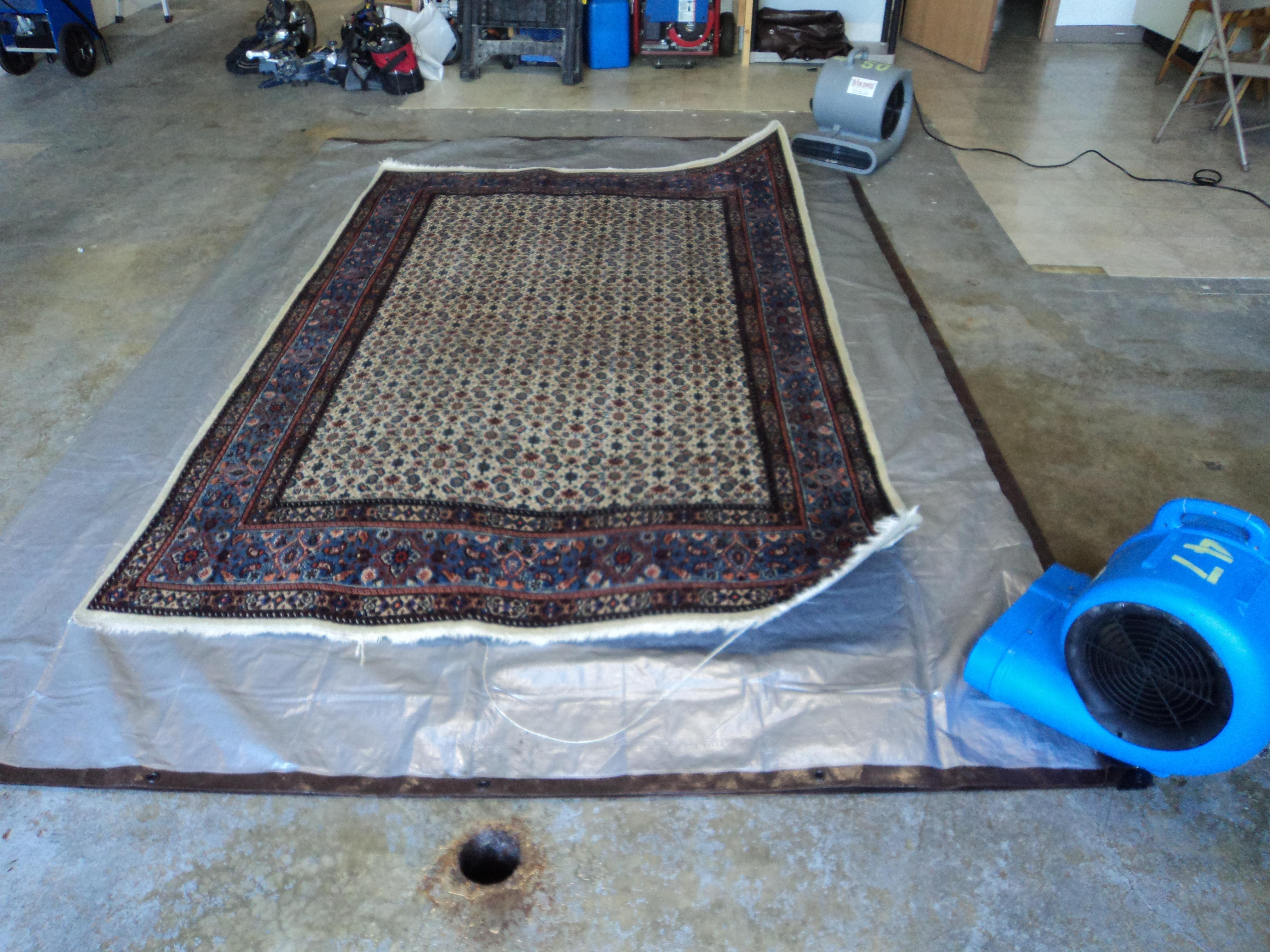 Oriental Amp Area Rugs X Treme Carpet Cleaning Amp Restoration